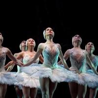 2010 Swan Lake-2-10-by luke isley-2-10-8990-Artists of Ballet West